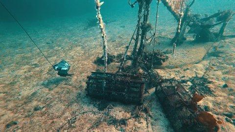 MISTET ELLER FORLATT: Teiner som er mistet, eller forlatt kan fortsette å fange skalldyr og fisk i flere år.