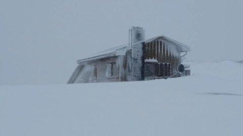 SNØRIKT: En må regne med mye vind og temmelig store snømengder 730 meter over havet, ikke så langt fra Tonstad. Alle foto: Privat