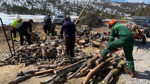 ANTONS VENNER: En gjeng som kaller seg Anton's Venner som står bak tiltaket med å sørge for at snøknekte trær ble gjort om til gapahuk-ved.