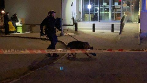 Politiet bruker hund i søket.