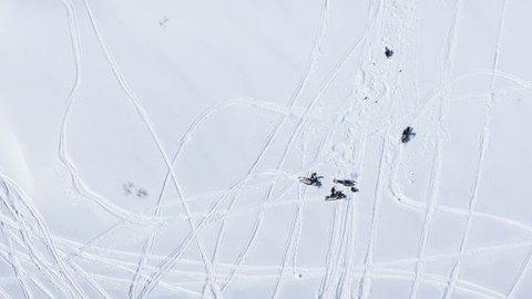 Statens naturoppsyn har i helga gjennomført kontroller og anmeldt ulovlig kjøring både nord og sør i landet. Foto: SNO