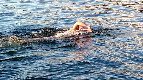 Dagmar Dahl svømte over Saltstraumen natt til mandag.