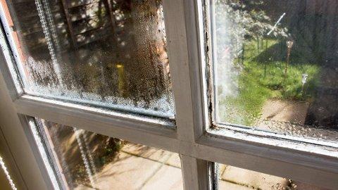 Dersom man gjør flere feil når det kommer til inneklima, kan det dannes mugg i boligen.