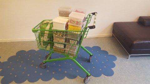 Slik kan det gå når sjefene på Norsk Radonvern går på butikken med sukkersug.