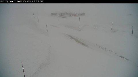 Slik så det ut på rv. 7 ved Dyranut på Hardangervidden like etter klokken 8 onsdag morgen.