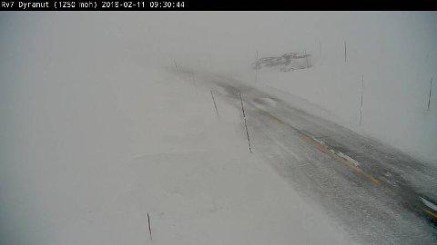 Slik ser det ut ved Dyranut på Hardangervidda like etter klokken 0900 søndag.