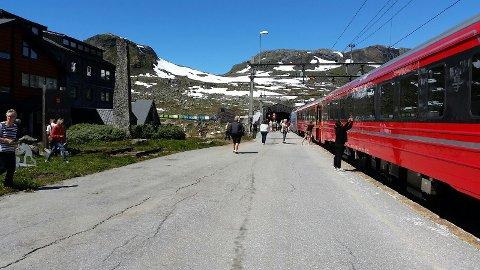 Et godstog fikk stans like etter stoppet på Finse. Fremst i bildet står toget fra Oslo.