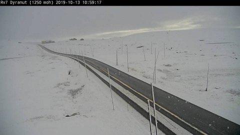 Slik så det ut på 1250 meters høyde ved Dyranut på Hardangervidda klokken 1100 søndag. Bildet er hentet fra Statens vegvesens webkamera