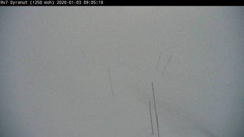 Slik så det ut på på Hardangervidda fredag formiddag.