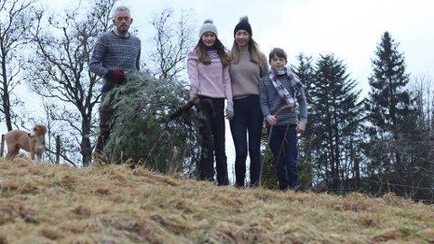 Familien på Sørlandet har hentet juletreet. Fra venstre Harald, Leah, Lene og Gabriel. De tar vare på klassiske juletradisjoner.