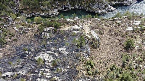 En mann i 40-årene har innrømmet å ha fyrt opp flere bål i terrenget og gått fra dem.