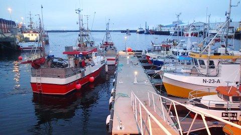 – Tidlig krøkes som god fisker skal bli. Mange starter karrieren som tungeskjærere under skreisesongen, sier fiskeriminister Per Sandberg.