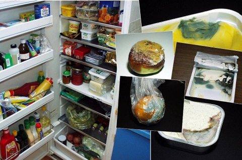 I jula er kjøleskapene ofte fulle, og det har lettere for å danne seg mugg på maten.