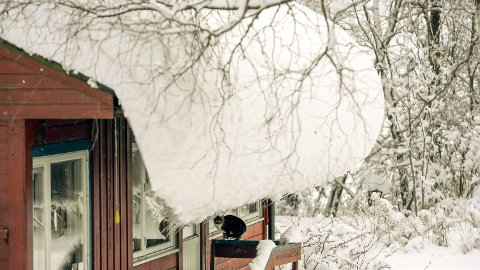MYE SNØ: Det er mye snø i Midtfylket, og takstmann Gjermund Tandberg Semmen anbefaler flere å vurdere måking.