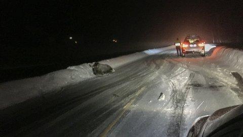 I VEIKANTEN: Elgen ble liggende i veikanten etter møtet med bilen.