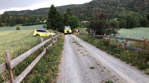 ETTERSLUKKING: Lynnedslag har ført til en mindre lyngbrann ved Bøen på Sysle i Modum.