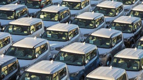 ELBIL-BONANZA: Bilimportørene regner med at 45 prosent av alle nye biler som selges i 2019, vil gå på strøm. Her har en ladning Kia Soul Electric ankommet Drammen havn.