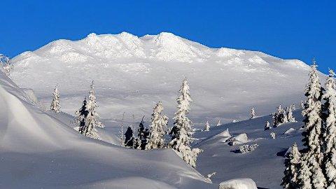 Kloakk i fjellheimen: Formannskapet i Sigdal skal torsdag ta stilling til om de ønsker å etablere et interkommunalt selskap sammen med Krødsherad, for å løse utfordringene Sigdal med kloakken i områdene ved Djupsjøen og Solesetra.
