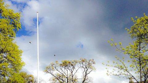 FLAGGLØST: Det blir også i år nakne flaggstenger ved barneskolene i Sigdal 1. mai.