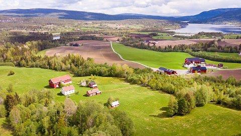 SJELDEN MULIGHET: - Det er sjelden vi har store gårder til salgs i Sigdal, og her får kjøperen 1.100 mål til samme prisen som en eneboligtomt i Øvre Eiker, sier eiendomsmegler Håvar Tandberg.
