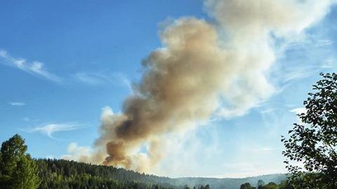 SKOGBRANN: Det har brent mange steder i distriktet etter tordenværet sist torsdag og det har enkelte steder vært vanskelig å finne fram til brannene.