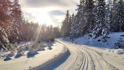 FLOTTE FORHOLD: På Ormåsen er det flott akebakke og nydelige skiløyper.