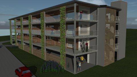 SKISSE: Slik er illustrasjonen av bygget som er lagt ved henvendelsen til kommunen. Dette er kun en arbeidsskisse, og ikke nødvendigvis slik det endelige bygget blir.