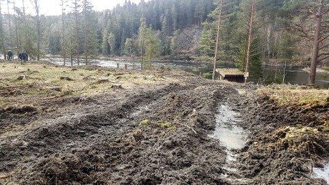 HOGST: Det er i dette området Viken Skog har hogd skog og som har skapt reaksjoner. Les Viken Skogs forklaring på hogsten.