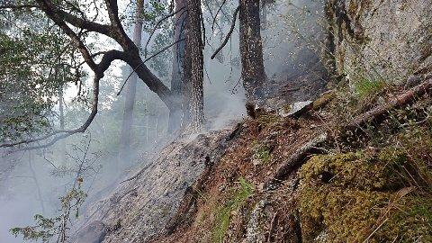 BRATT: Brannmannskapet måtte ta seg fram på berghyller i den bratte Ulaåsen.  Vann fantes ikke, så de måtte forsøke å kvele flammene.
