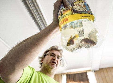 Auksjonarius: Leder av Norges Akvariumforbund, Kjetil Eilevstøl, fikk ut de vel 300 objektene i løpet av drøye tre timer.