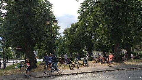 INTENS JAKT: Folk i alle aldre jakter Pokémon på Gamle Kirkeplass i Drammen.