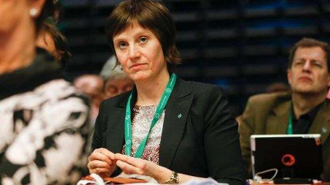 Stortingsrepresentant Kjersti Toppe (Sp) her er under Senterpartiet sitt landsmøte i Haugesund i mars i år. Foto: Jan Kåre Ness / NTB scanpix