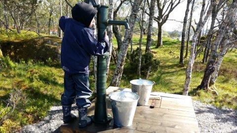Ein liten gjest pumpar vatn frå den nyrestaurerte brønnen på Brendøya - kanskje til geitene?