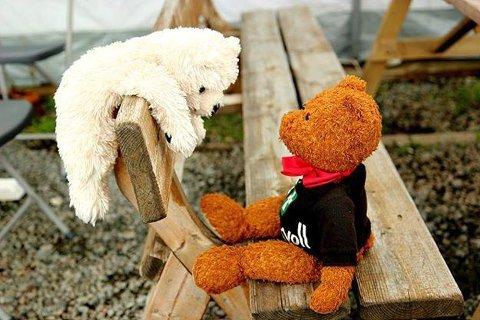 STOR OPPGÅVE: Ein får håpe Alfred Bamse lukkast bedre med øybuane enn med denne slappe kosebamsefrøkna.
