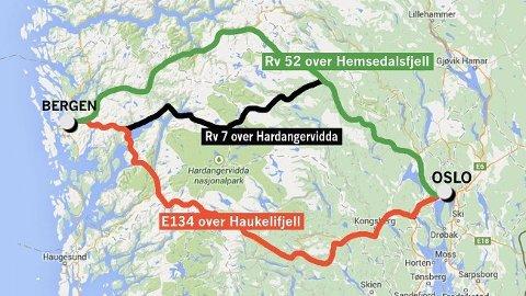 DELT: Regjeringa vil satse både på Hardangervidda og Hemsedal.