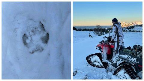 JAKTAR FRAMLEIS: Jegerane har funne spor, men ingen ulv. Dei held fram jakta både i natt og fredag.