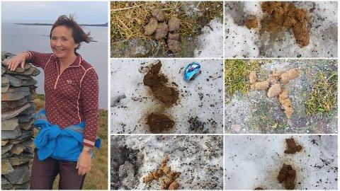 GRISERI: På turane kring Vieåsen har Torhild Haugen komme over svært mykje hundeskit som hundeeigarane berre har latt ligge. Ho oppfordrar dei til å ta ansvar og plukke opp etter seg.