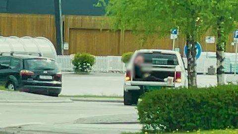 IKKJE INNANFOR: Politiet meiner det er tilfelle for denne køyreturen. Firmaet er samde.