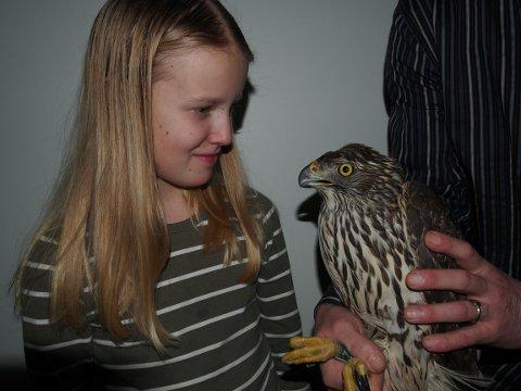Signe Aae (9) ser på rovfuglen med fryktinngytende klør som hun fanget med bare hendene timer før. foto: Rune Aae