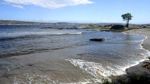 Flotte bademuligheter: Søndre Sandøy har flotte badesetrender  med utsikt over til Sverige.