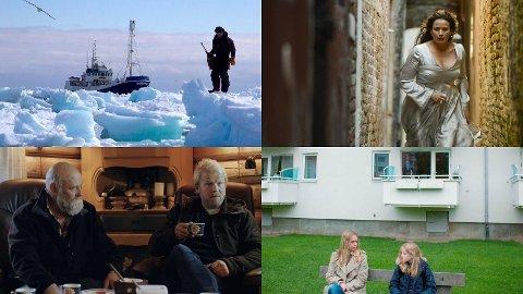FILMPREIK: På plakaten til det nye konseptet Filmpreik har det hittil stått fire filmer; Ishavsblod (øverst til venstre), Karenina and I, Hoggeren og The Rules For Everything.