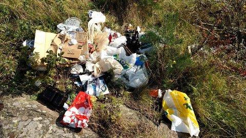 Dumpet: Søppelet var dumpet rett ved bålplassen i det populære turområde ved Gansrød.