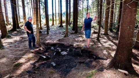Kunne blitt skogbrann: Rask reaksjon avverget at det tok ordentlig fyr i skogen i Råde for tre uker siden. På bildet er Thor-Åge Jensen, skogbruksleder i Viken Skog og Lars-Oskar Ørmen, skogeier.
