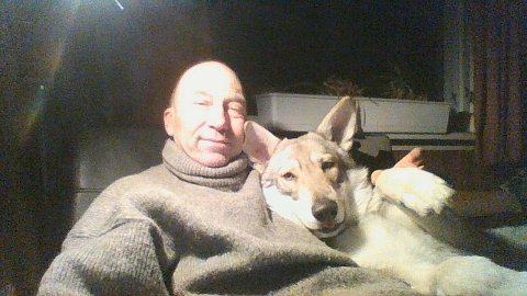 Stjålet hund: Arnulf Svendsen (59) etterlyser hunden Lupus som han mener ble stjålet for fire år siden.