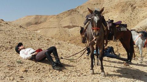 SAMLER KREFTER: Artikkelforfatter og hest har en rolig stund før den siste kraftprestasjonen i ørkenrittet. Alle dagene vi red stekte sola fra himmelen. Temperaturen lå rundt 30 grader.