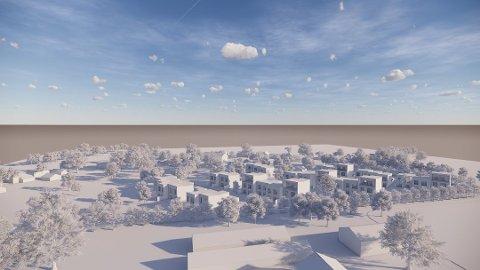 Ønsker å sette opp 30 rekkehus:  Arkitektene som har levert de foreløpige skissene, skriver at rekkehusene skal tilpasses bebyggelsen på Byens marker, de klassiske hvite trehusene i gamle Torsnesveien. (Foto: AART architects)