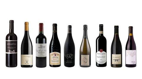 KNALLKJØP: Bestillingsutvalget rommer skjulte skatter, mener vinpanelet og deler ut gulltips.
