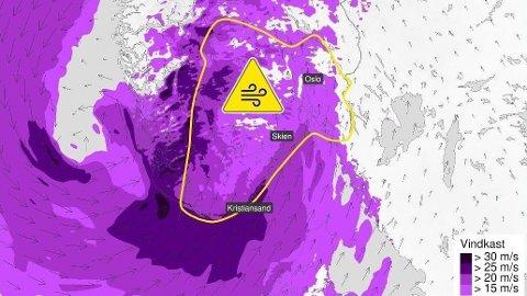 Det er ventet mye vind i store deler av Sør-Norge de neste dagene, og meteorologene har sendt ut farevarsel.