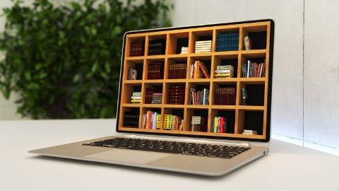 Bibliotekar Herdis Marie Ruud Hansen kan fortelle deg at det er fullt mulig å nyte en bok og en PC i skjønn forening.