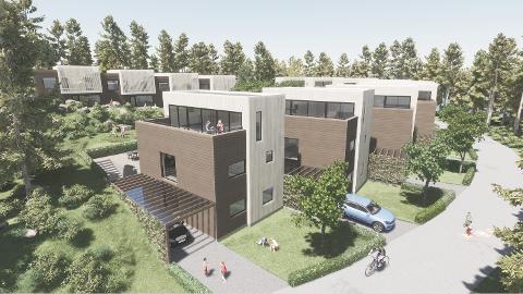 Ved Rødsmyra skal det settes opp ni boliger i kjede og fire rekkehus –  alle med flate tak naturtoner i grått og brunt. Flere i planutvalget var misfornøyde med utformingen.
